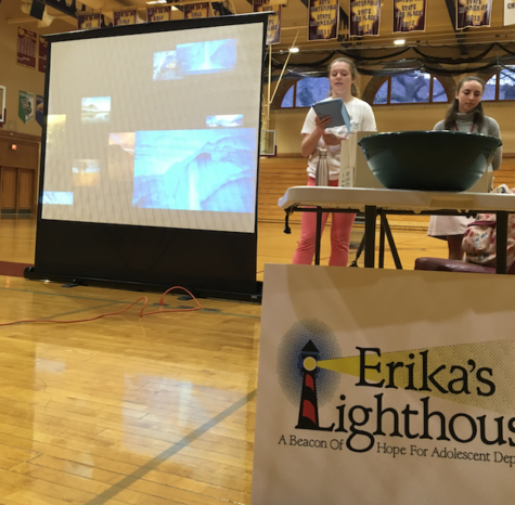 Erika's Lighthouse Sheds Light On Mental Illness